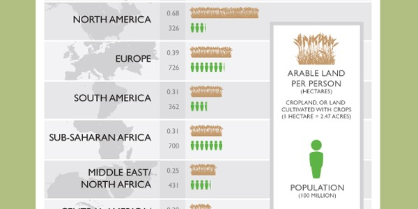 Report Chart - Arable Land and Population