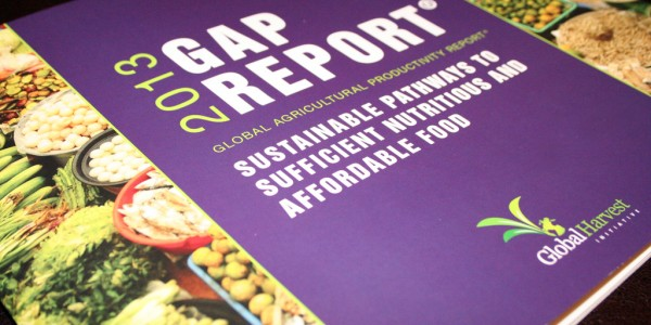 2013 Ag Report - Cover