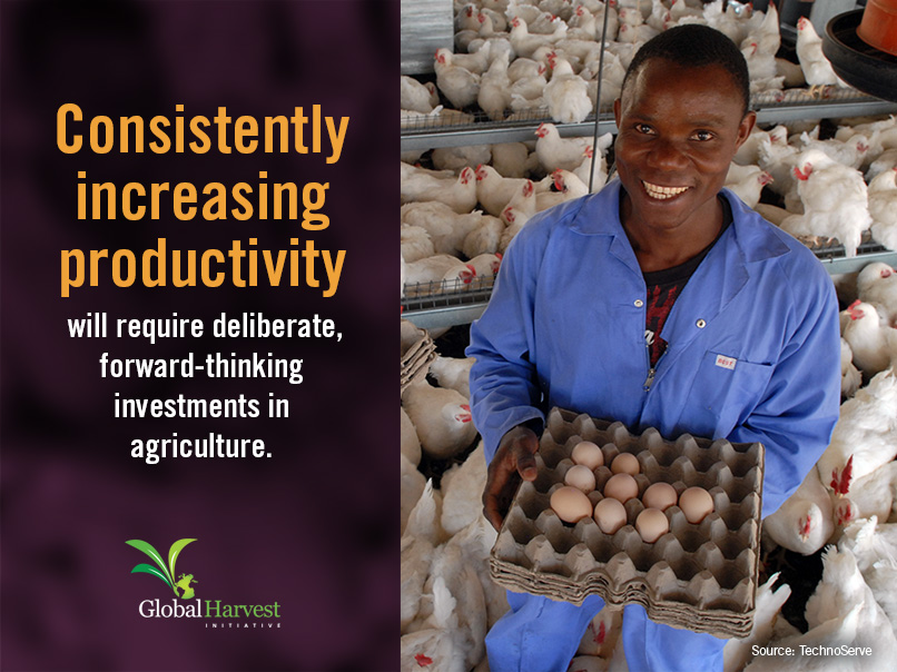 <p>Productivity</p>