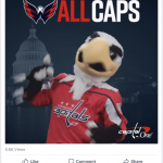 Art Direction, Video Editing & Animation for the Washington Capitals in the Playoffs